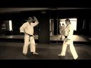 Удары в айкидо. Часть 3. Punches and atemi in aikido.