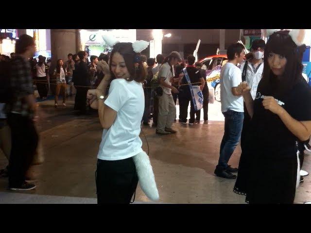 Neurowear necomimi with shippo tail demo at Tokyo Game Show 2012