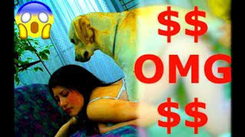 Wow Wow Beautiful Girl Playing With Dog Cute Girl Give Food To Puppy In Home Part 2
