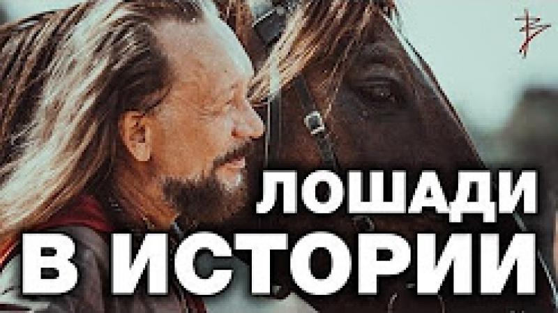 Правда о троянском коне. Фальшивые колесницы в музеях. Историческая правда о лошадях В.Сундаков