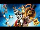 ❤ ГОЛОСОВАНИЕ фото Конкурс 🔥  📷 Фото Моя семья Кто из участников пойдет в цирк 🎪 🎁 ПРИЗ - ПРИГЛАСИТЕЛЬНЫЙ БИЛЕТ в Цирк Розо