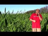 Maestro - Зелене жито