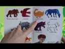 Brown Bear Brown Bear What Do You See Book Reading for Kids Toy Caboodle 1