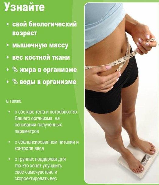 бесплатно рассчитать диету - olikudiets