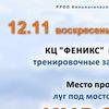 КУРСИНГ в Рязани 19.11.2017->Собаки->КЦ ФЕНИКС