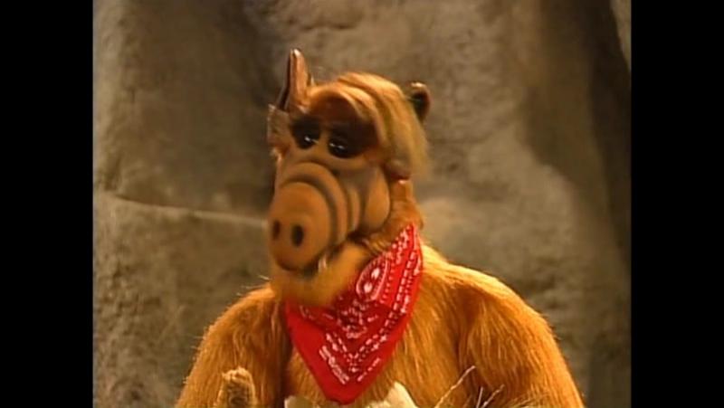 Alf Quote Season 4 Episode 20 _Альф и Вилли