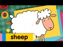 How To Draw A Sheep | Drawing Coloring for Kids