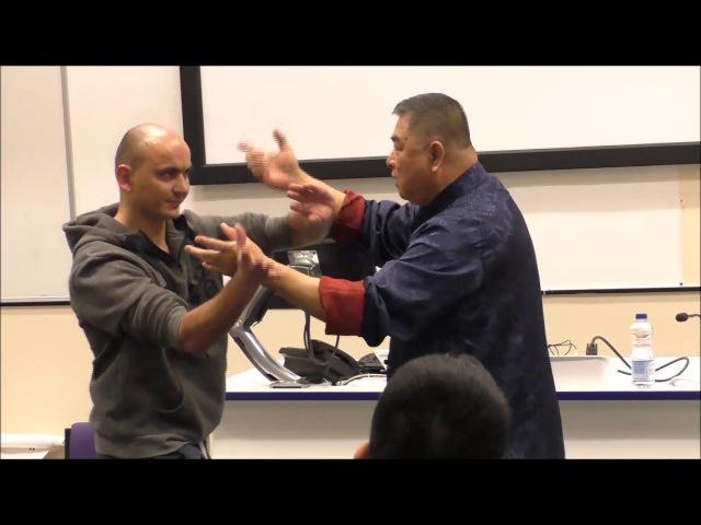 Deep Internal Kungfu of GM Sam Chin - Hatfield University Lecture (Flying Monk Ep. 25)