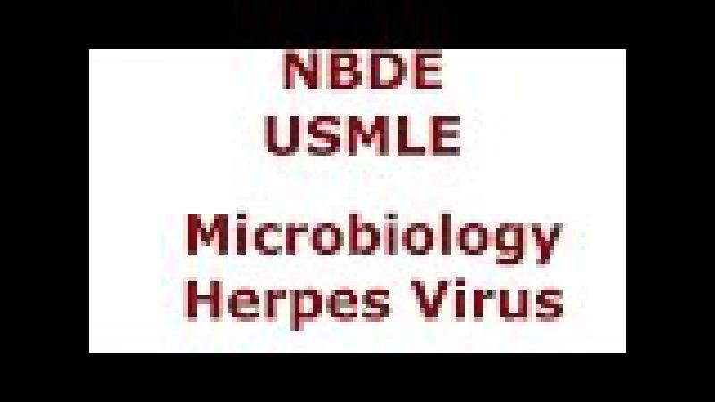 Herpes Virus NBDE USMLE - HSV1 - HSV2 - VZV - EBV - CMV - HHV8