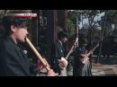 21st Century Schizoid Man King Crimson Cover Electric Tsugaru Shamisen NHK Blends