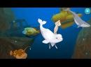 Животные водного мира Мультики про морских животных