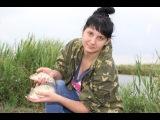 Супер рыбалка на карася карпа на снасть Убийца карася