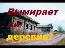 Вымирает ли деревня Переезд в деревню