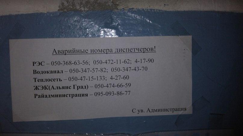 Анна Гасымова | Макеевка