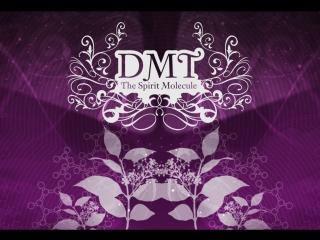 ДМТ Молекула духа DMT The Spirit Molecule (2010)