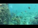 Bali_ocean