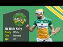 10 Young Hurlers to Watch in 2017