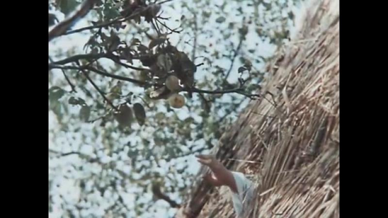 Бумбараш (1 серия) (1972) фильм