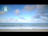 Две минутки медитации для гармоничного, сука, дня ( Осторожно 21+]