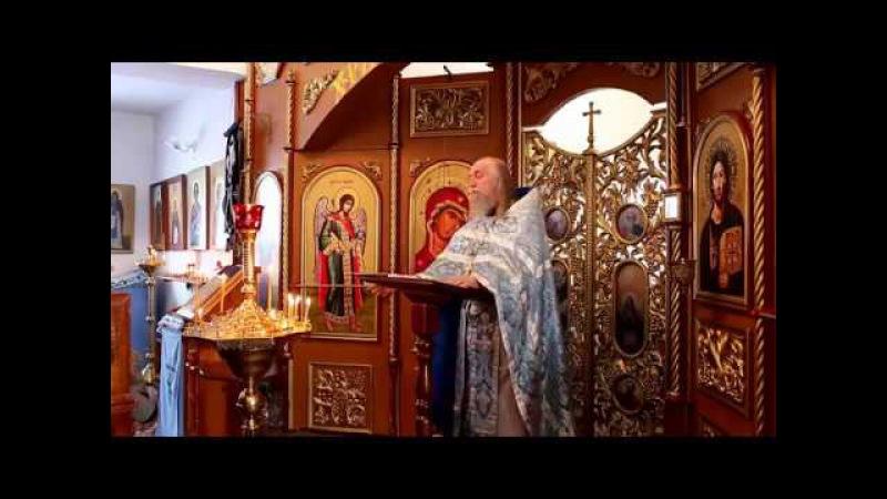 Протоиерей Валерий Бородин перестал поминать имя патриарха Кирилла
