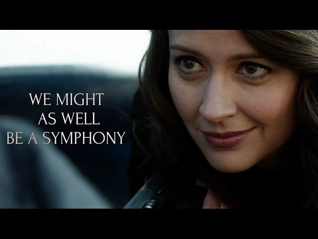 Person of Interest || We Might As Well Be a Symphony