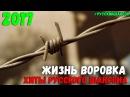 Жизнь Воровка. Сборник Русского Шансона для Вас Только супер Хиты шансонье.
