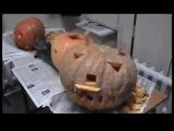 Halloween в ВЭГУ, 2007 г.