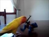 The Axe Birdler