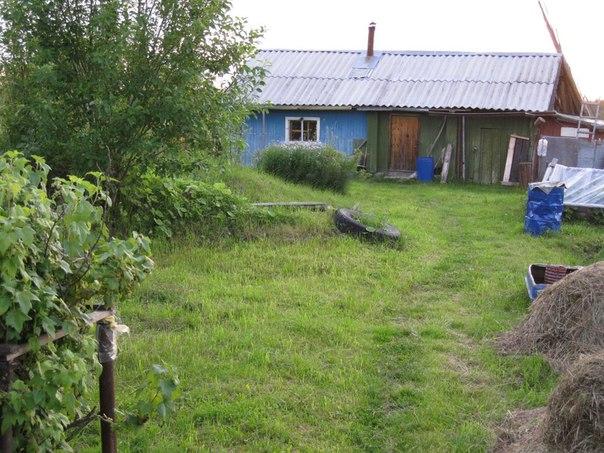 Фото №456239231 со страницы Ольги Васильевой