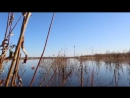 Сезон охоты на уток и гусей 2015 в Якутии