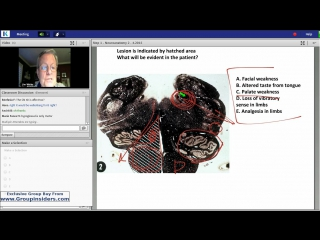 3rd Lecture-Kaplan Step 1 CA-Neuroscience-White-May 28, 2015