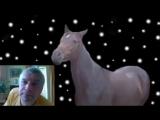 Геннадий Горин – Чёрные лошади ( Музыка звучит в видео )