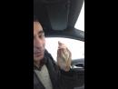 Как заработать денег