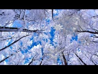 Нереально красивая зима! Зимняя природа во всех красках!!!