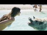 Summer Vacation!!  Hannah Stocking &amp MyLifeAsEva