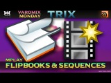 VMT 016 - HOUDINI - Flipbooks And Sequences
