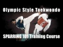 ★ Taekwondo sparring 101 training course completed