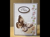 No.82 - Watercolour Wings Card & Team Training Swap - JanB UK Stampin' Up! Demonstrator Independent