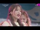 170826 레드벨벳 Red Velvet cut @ a-nation 2017