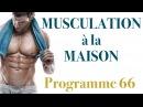 Programme de musculation avec haltères : musculation à la maison (plus de muscle, moins de gras)