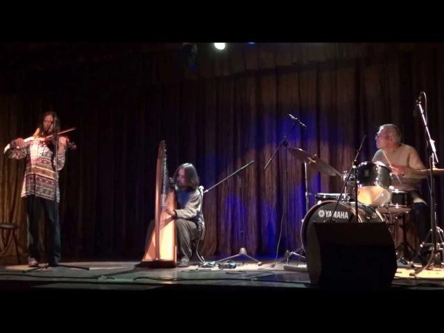 Philipp Barsky - Celtic harpdrumsviolin latinajazz improvisation (Kharkov, 16 Feb 2013)