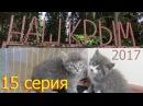 Наш Крым 2017. 15 серия: 15 сентября