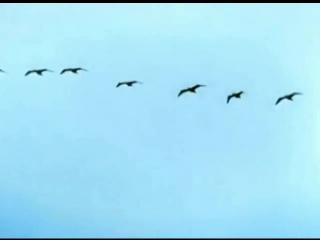 Семнадцать мгновений весны (1973) - Музыкальные темы фильма и Вячеслав Тихонов.