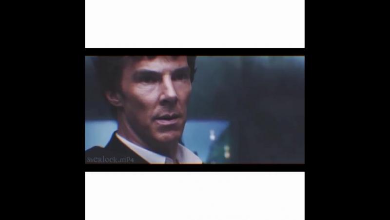 Sherlock vine