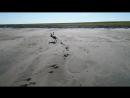 берег Карского моря, видео Будилов В.А.