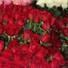 Цветы Стерлитамак - доставка от Цвет-база.рф
