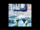 Бассейн со стеклянным дном на 42-м этаже