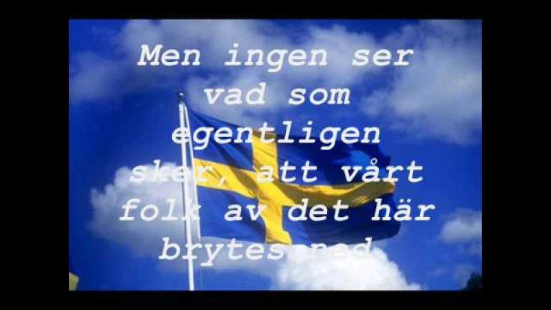 Svensk Ungdom - Sverige har fallit