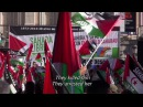 Life is Waiting: Referendum and Resistance in Western Sahara - Official Trailer