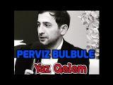 Perviz Bulbule Yaz Qelem 2017 (Gel Qelem)